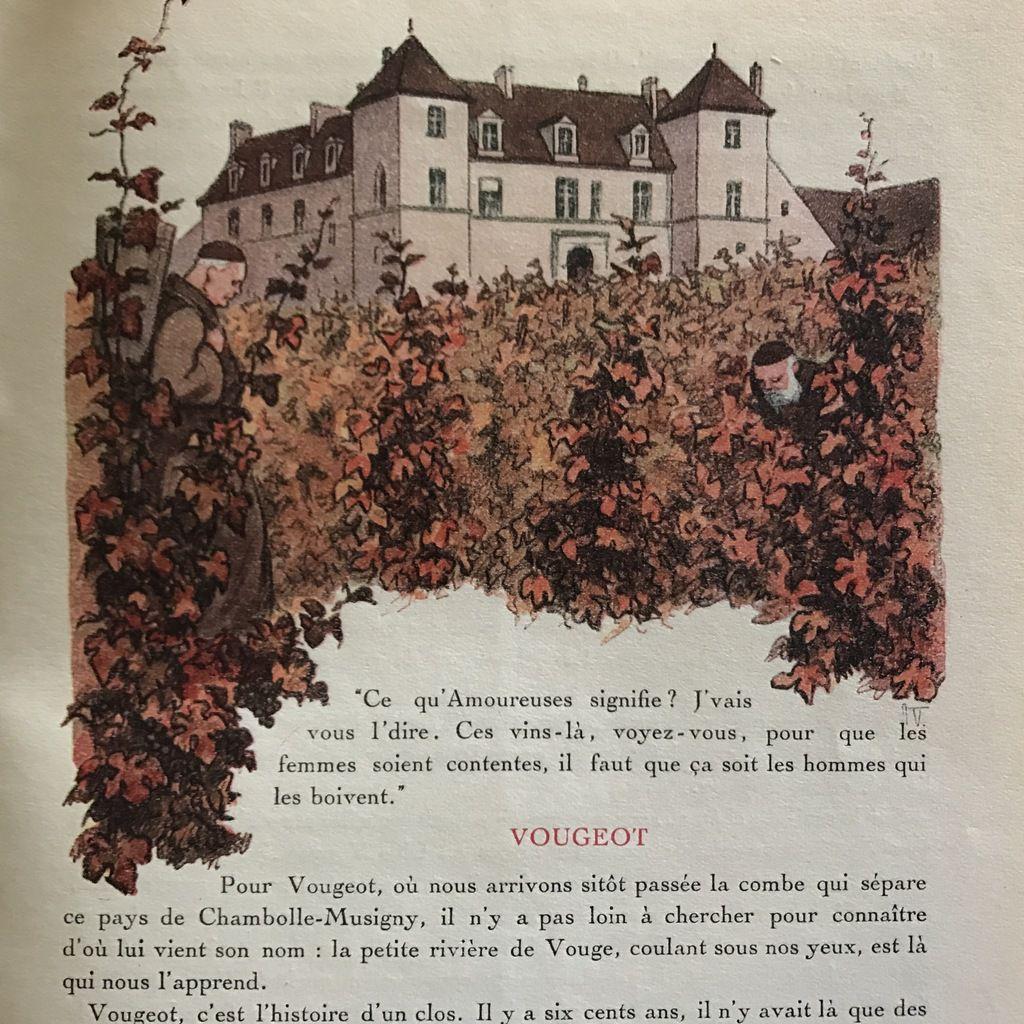 Le feuilleton de l'été : l'histoire œnologique de la côte bourguignonne (4) Le préjugé de la maladresse