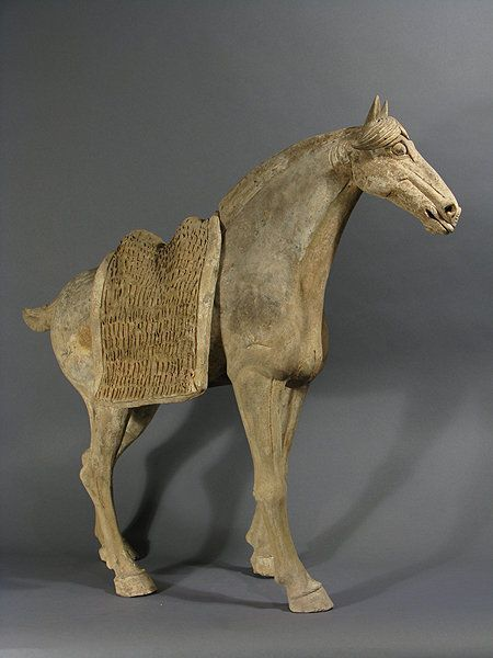 Tang - Chevaux
