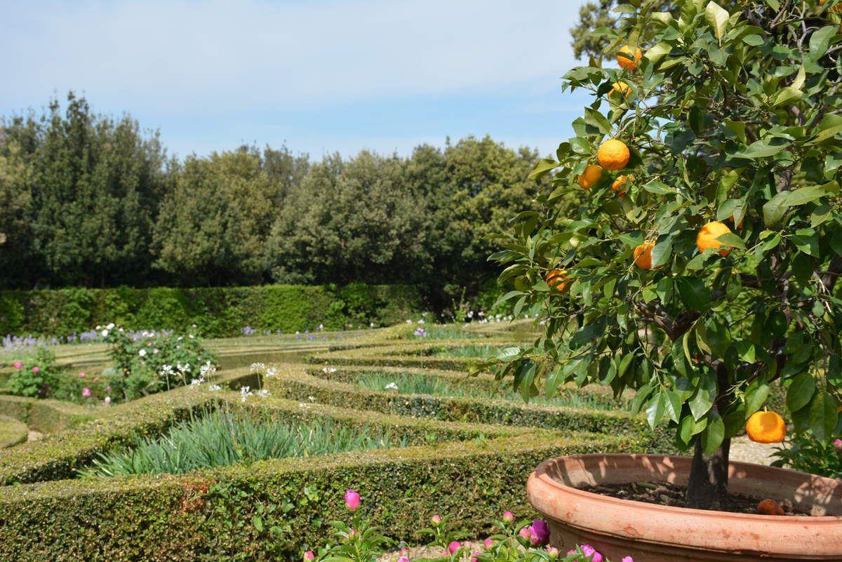 Villas et jardins des Médicis en Toscane - Photos: Lankaart (c)