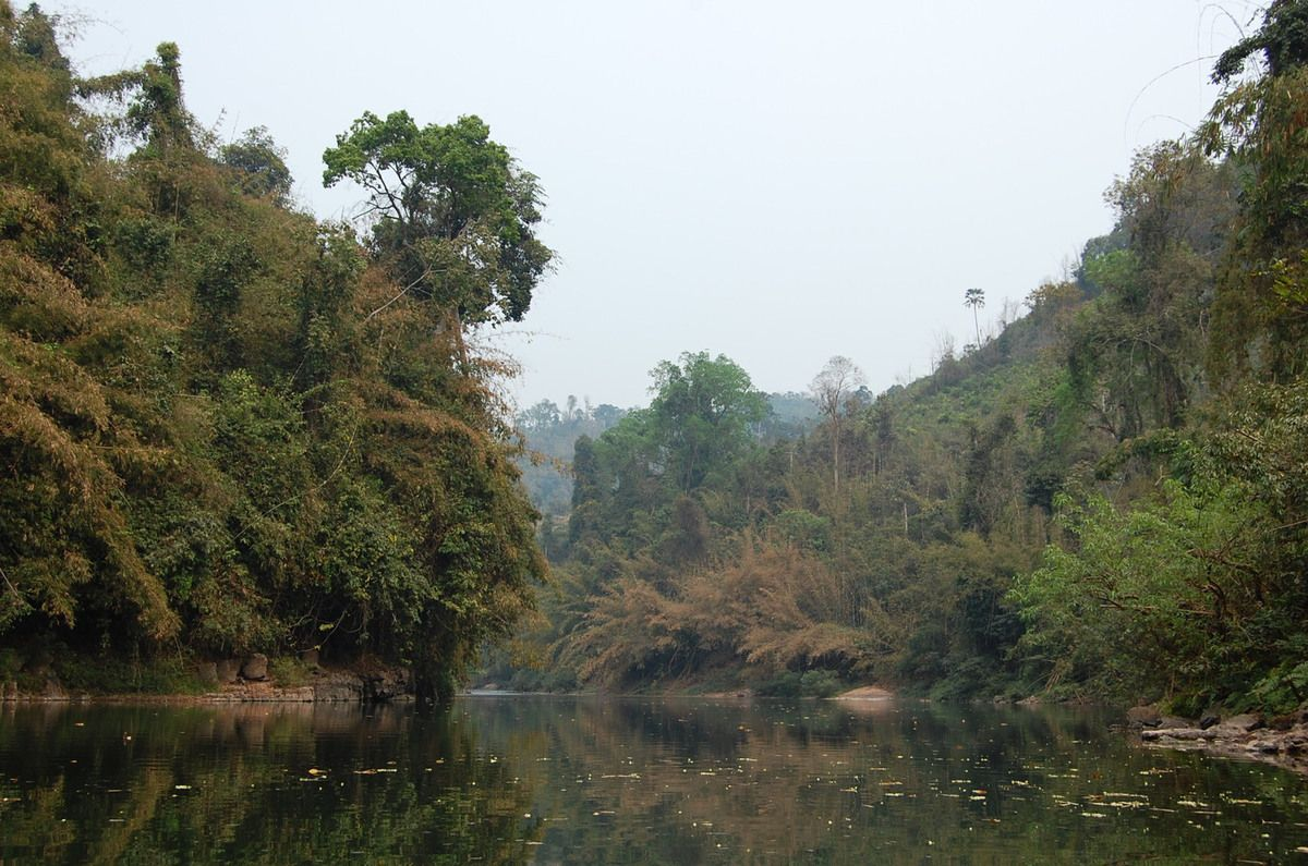 Laos - Nam Ha National Bio-Diversity Conservation Area - Photos: Lankaart (c)