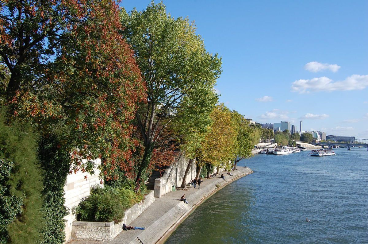 Paris - Rives de la Seine - Photos: Lankaart (c)