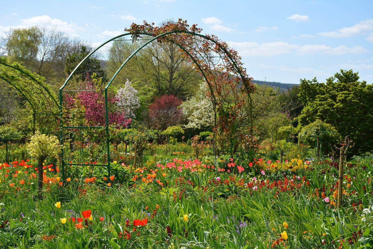 Monet - Les jardins de Giverny