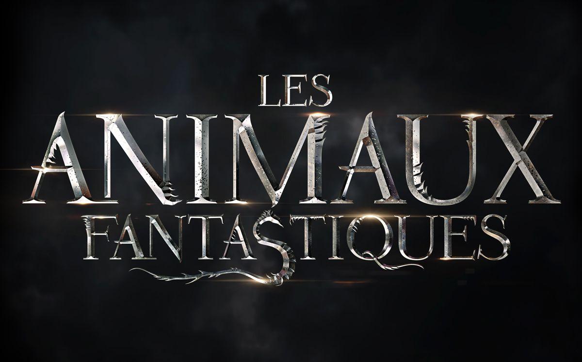 Cinéma: Les animaux fantastiques - 8/10