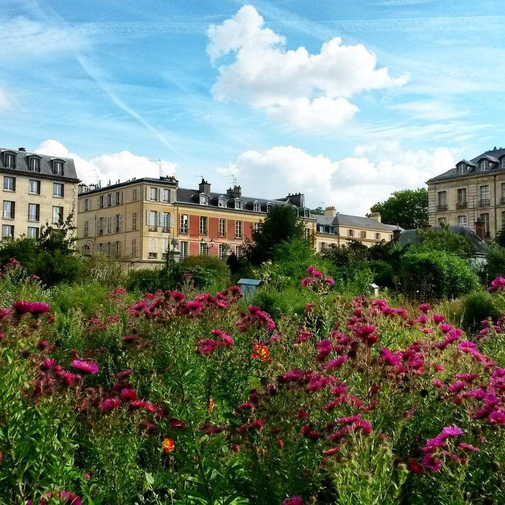 Versailles : Jardins et potager du Roi