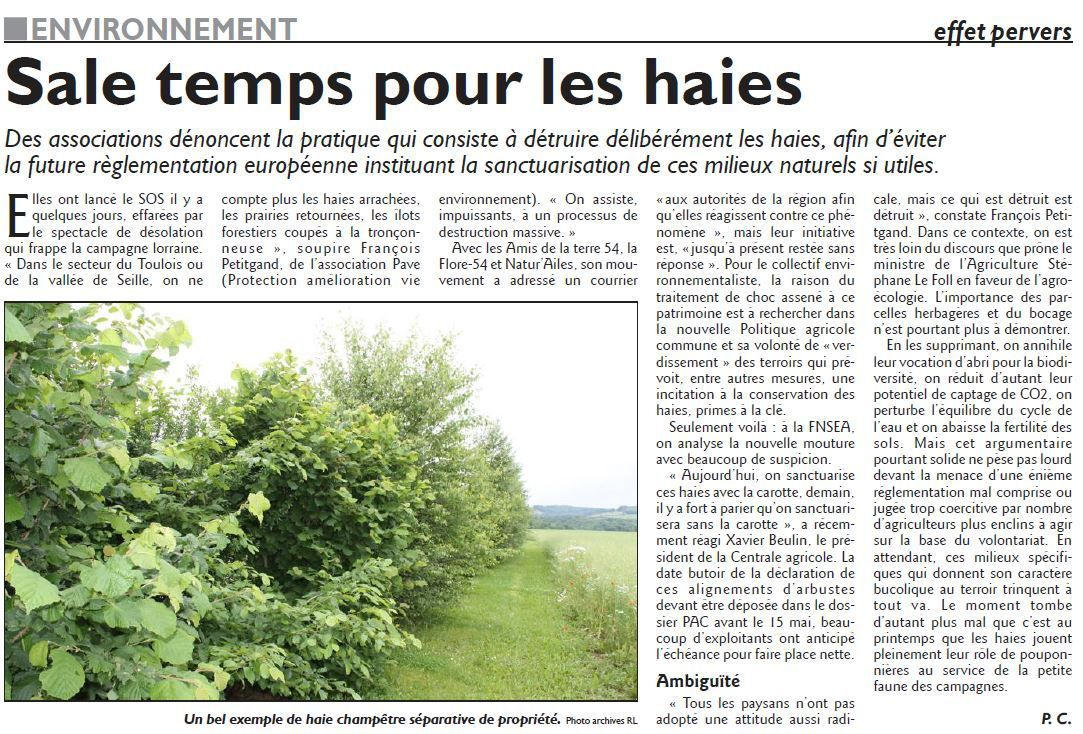 Haies anab association nature alsace bossue - Periode pour tailler les haies ...