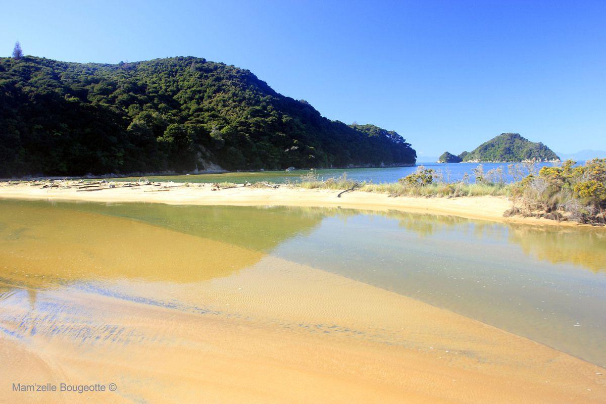 Le sublime parc national d'Abel Tasman