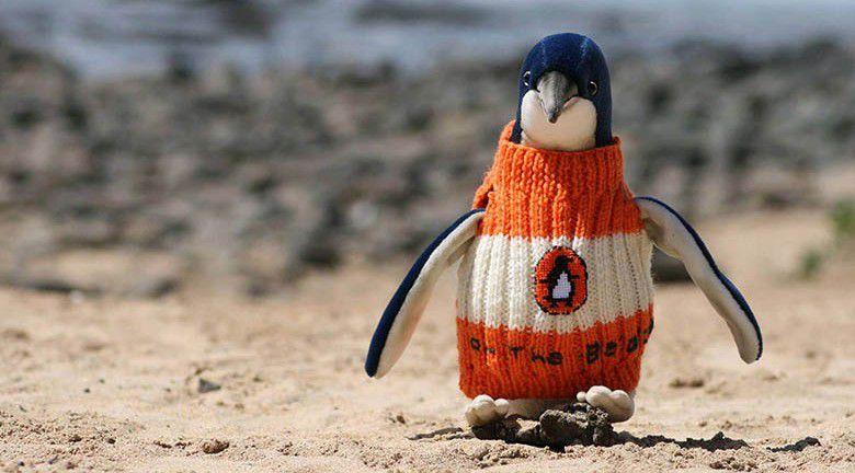 On recense pas moins de 32.000 pingouins sur l'île. Le pétrole  se colle dans les plumes des manchots. Ceux-ci lissent leur corps de leur bec pour se nettoyer. Ils ingèrent alors le pétrole qui devient mortel. Ils ne peuvent plus manger et, dans le moins pire des cas, se mouvoir ou réguler leur température. L'idée peut sembler étonnante , mais elle peut être vitale pour ces petite créatures toute mignone. Et tant qu'à se rendre utile, pourquoi ne pas décorer ces vêtements ? Pour inciter les participants, le projet va prendre des allures de défilé de mode. Un concours fut organisé pour sélectionner le pull animalier le plus tendance. Les 6 gagnants sont visibles sur la photographie.