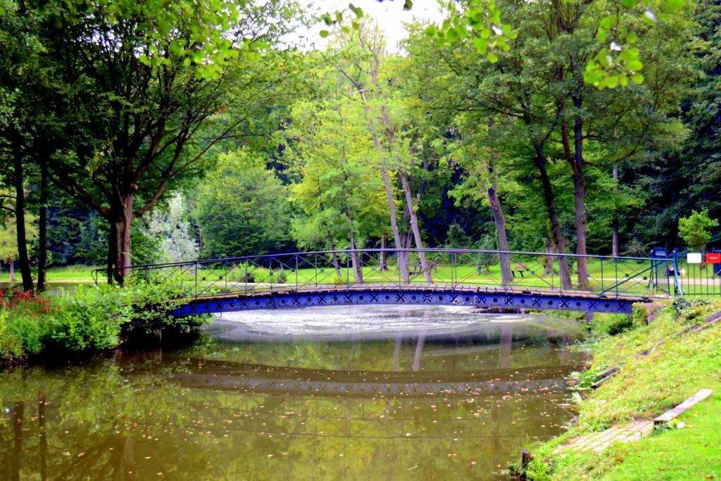 Notre bel étang