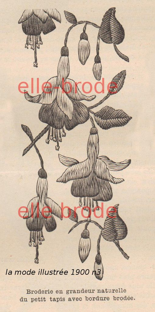 Guirlande de fuchsia :modèle de la mode illustrée de 1900