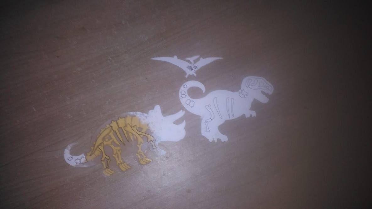A la découverte des squelettes. Grâce à de l'eau dispersée sur l'image on découvre le squelette de plusieurs dinosaures. Et chose vraiment bien, ça s'efface donc on peut recommencer.