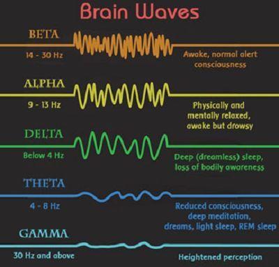 Prouver votre identit gr ce vos ondes c r brales combaillaux libre expression de - Le sel et les ondes negatives ...