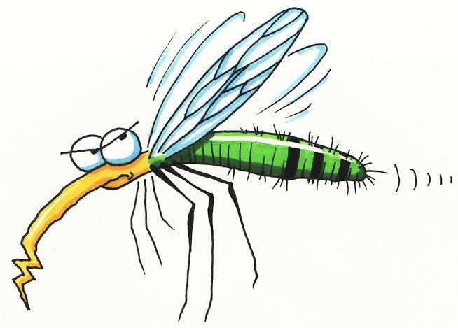 Le karma du moustique