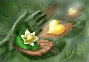 Imaginons que chacun apprenne à utiliser l'énergie qu'il a dans les mains