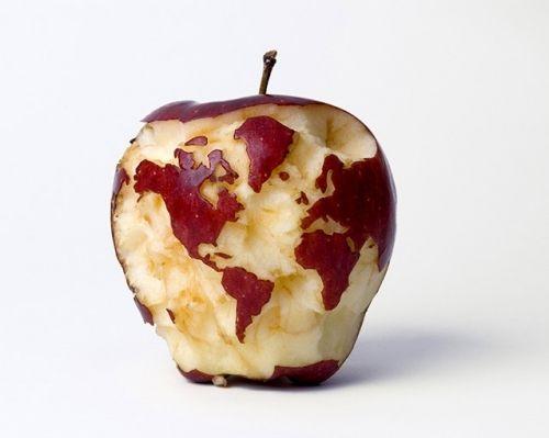 Activité 5ème # La faim dans le monde en caricatures