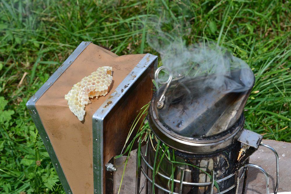 La vie au rucher de la Pierrille à Voiron