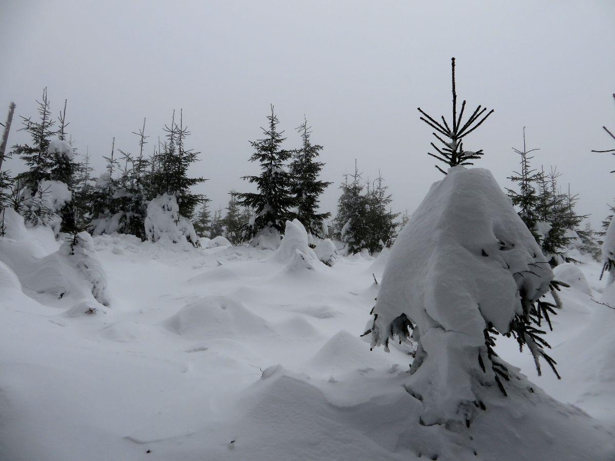 Enormes quantités de neige fraiche.