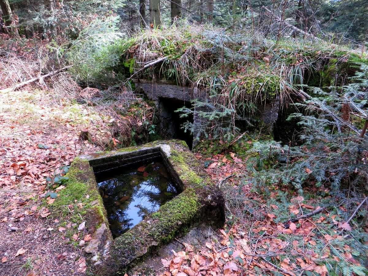 Bunker Allemand dans le secteur du Haut des Planches