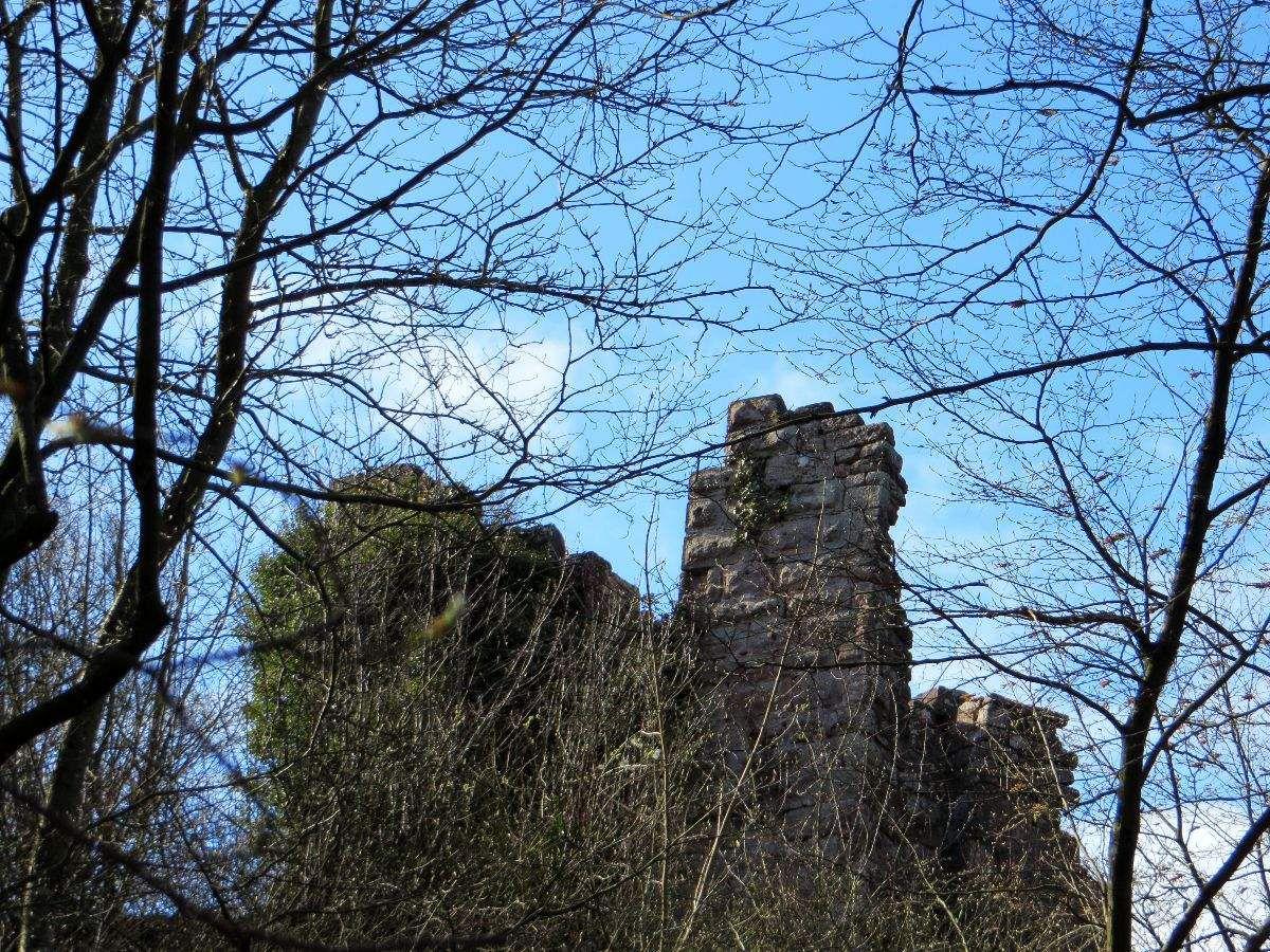 Ruines du Petit Geroldseck