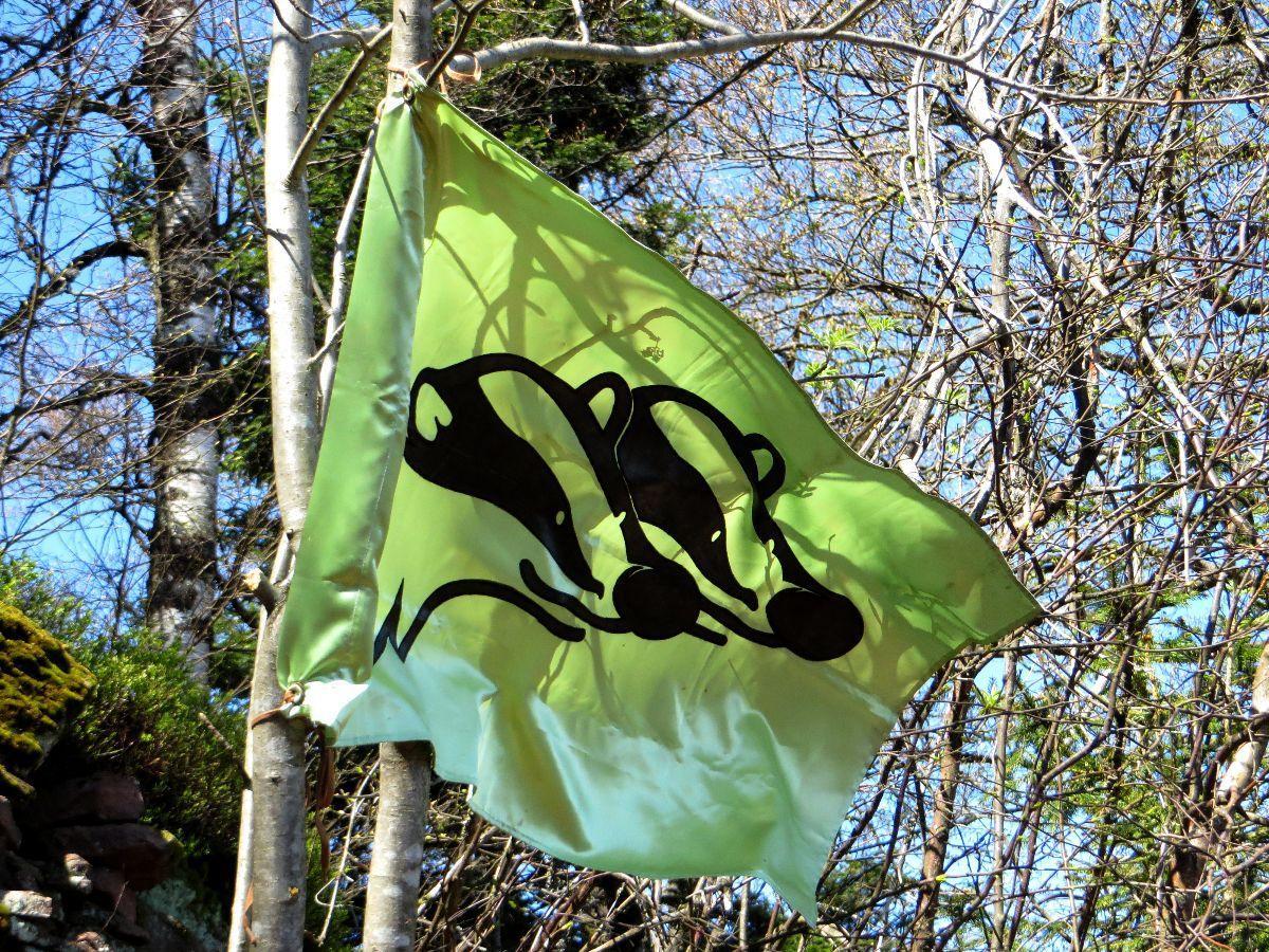 Le drapeau des Blaireaux flotte au Umwurf