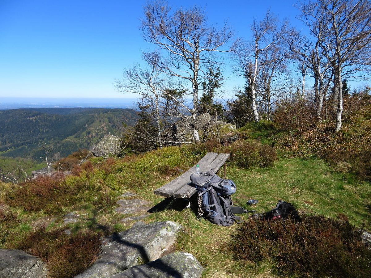 Petite pause au Donon, à quelques mètres du sommet
