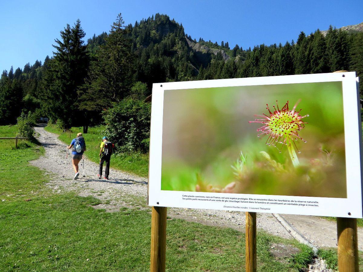 Exposition photo sur le parcours à Nant Borrant