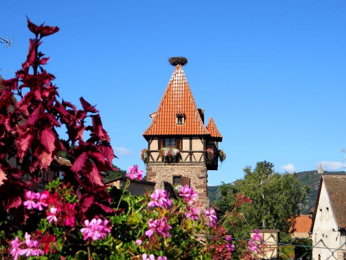 Retour à Châtenois, la tour des sorcières