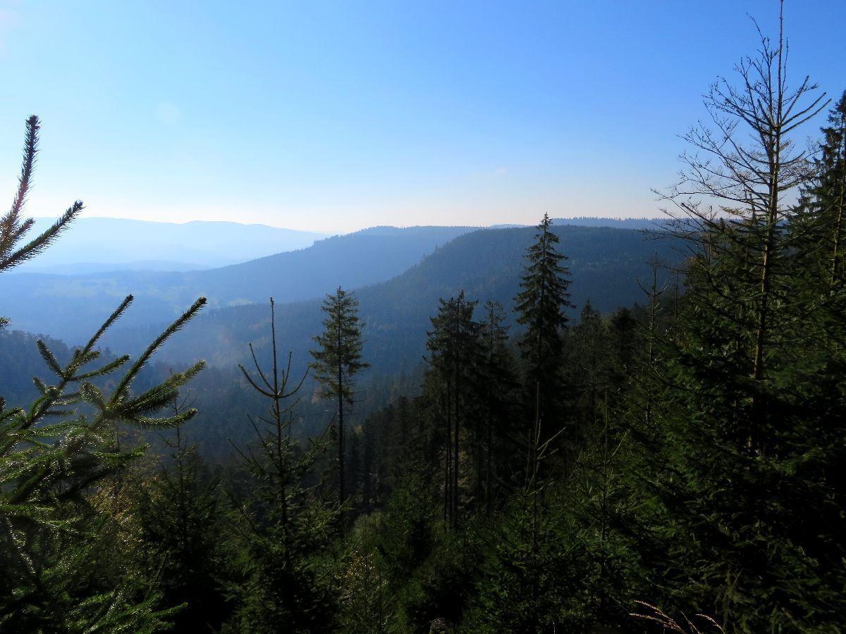 Par endroit des ouvertures permettent d'admirer la montagne