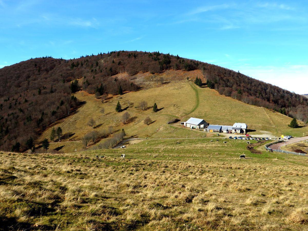 Coup d'oeil en arrière vers le Storkenkopf, deuxième sommet Vosgien de par son altitude de 1366 m