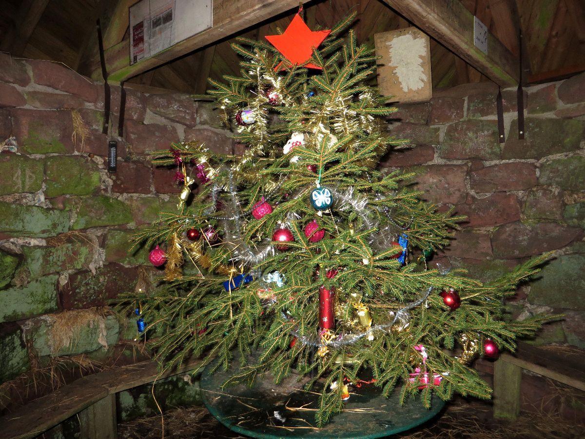 Le sapin de  Noël de l'abri de la Haute Loge