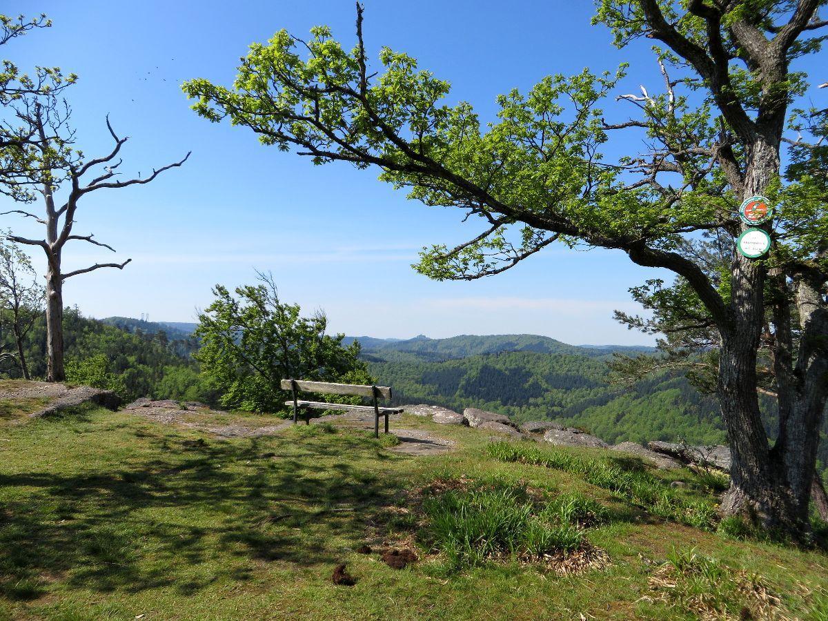 Point de vue au Krappenfels
