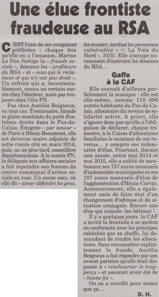 Une élue frontiste fraudeuse au RSA (Le Canard Enchaîné - 30/12/15)