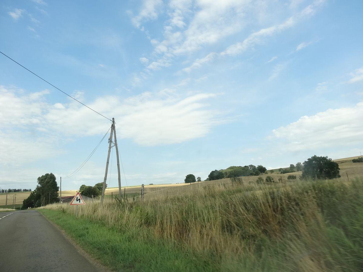 Paysages d'été en Ardennes, le poteau & l'arbre rond, Cliché1-3 Elisabeth Poulain