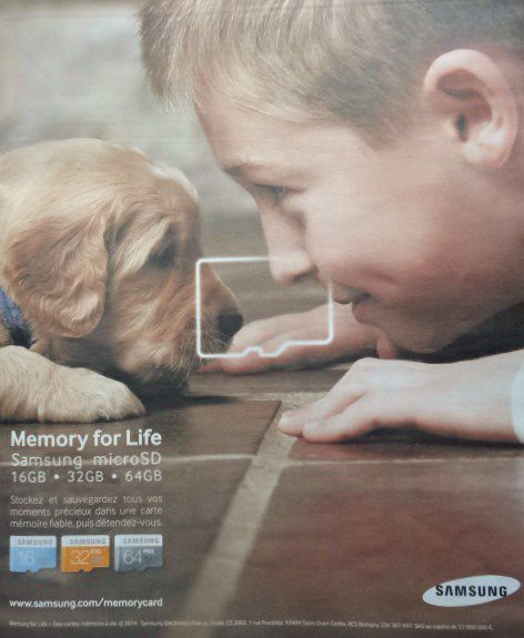 Samsung-microSD, Memory for Life, petit chien-petit garçon, Courrier International, n°1232, Cl2/2. Elisabeth Poulain