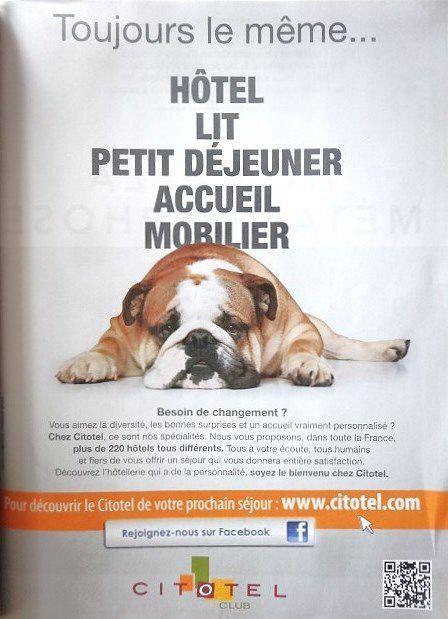 """Pub Citotel-TGV Mag 2012-le bull-dog anglais """"Carpy"""". Cl2/2. Elisabeth Poulain"""