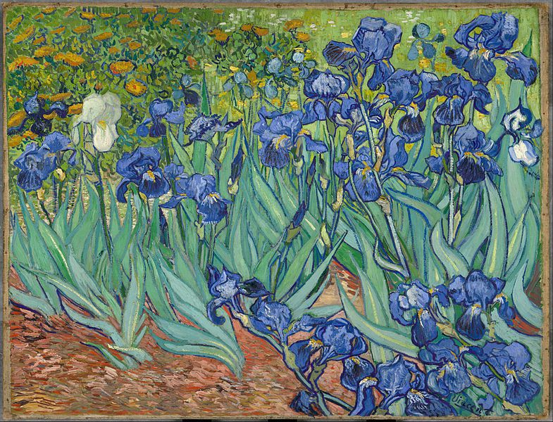 Vincent-van-Gogh-Iris-1889-Getty-Center-wikipedia, Elisabeth Poulain