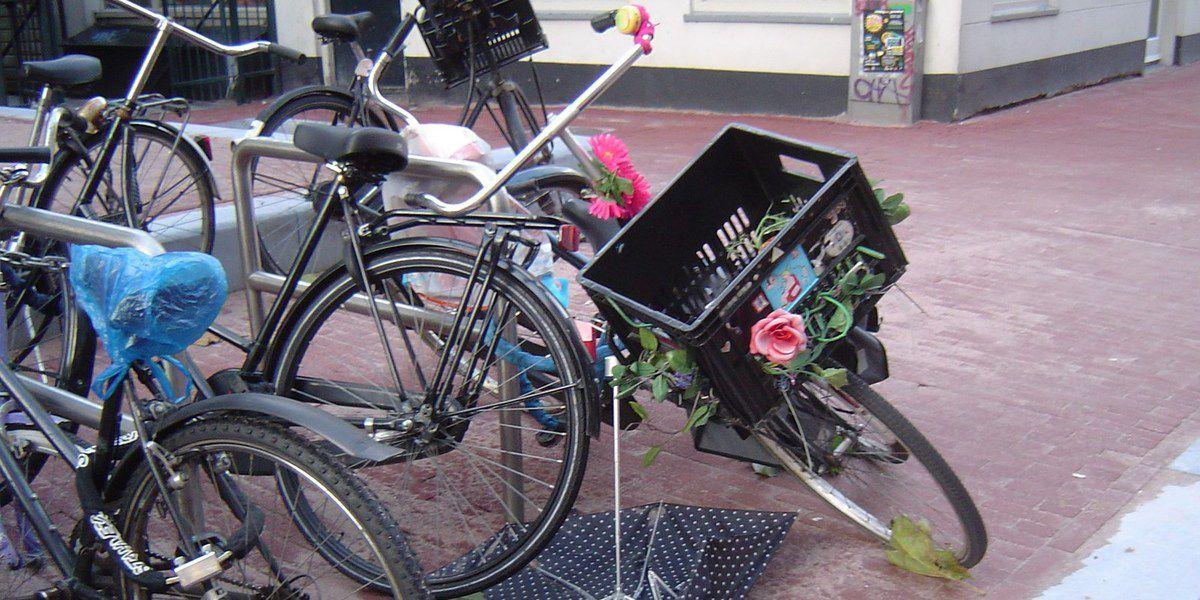 * Amsterdam, vélo de dame, avec cageot à fleurs et parapluie ouvert, Cl. Elisabeth Poulain