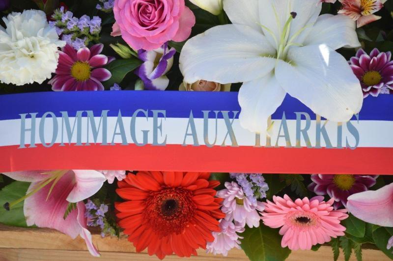 53 après pour ne pas oublié cérémonie du 25-09-2015RE - JOURNEE NATIONALE DES HARKIS - A ONGLES