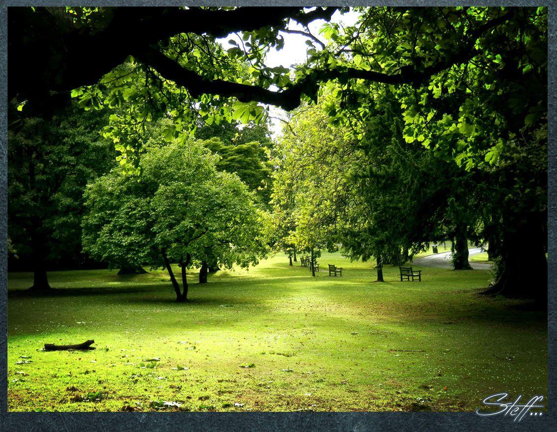 Ville, parc... Birmingam, au-delà des son histoire de ville industrielle, revêt quelque charme quand on s'y attarde