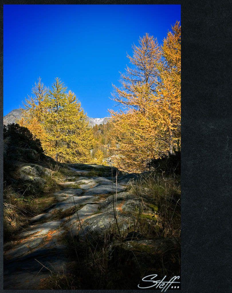 Automne grandiose dans cette vallée près de Briançon, endroit magique pour se ressourcer