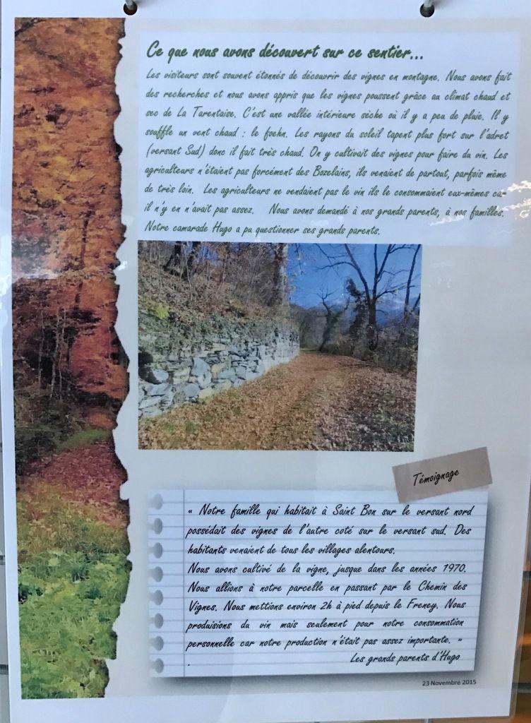 Faudra t il rebaptiser le Chemin des Vignes en Chemin des Crottes?