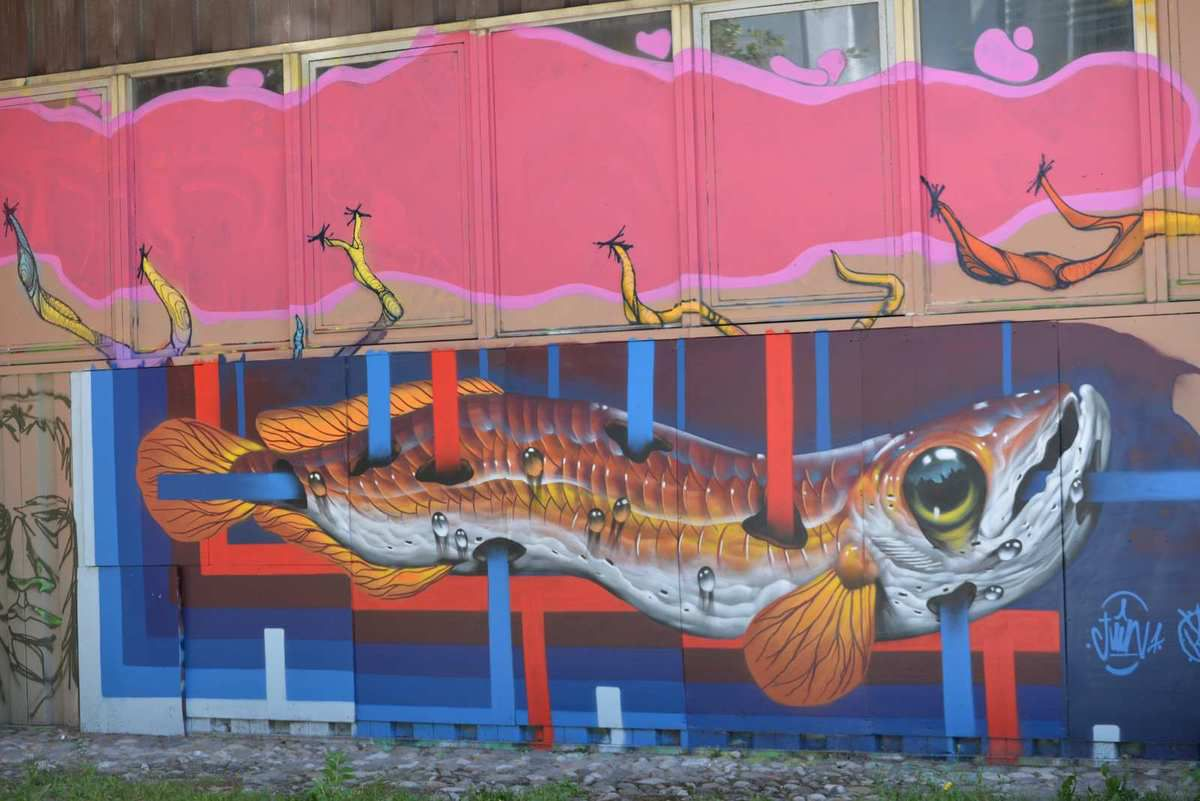 Street art 2 Grenoble on continue...