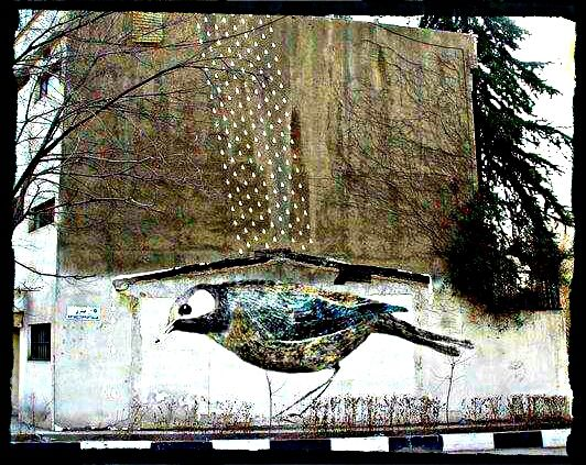 Street Art en Iran, la révolution imperceptible.