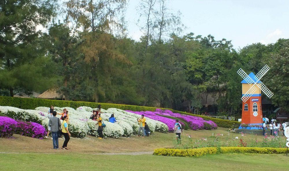 10 décembre 2015 : Udonthani, balade au Parc de « Phu Foilom »