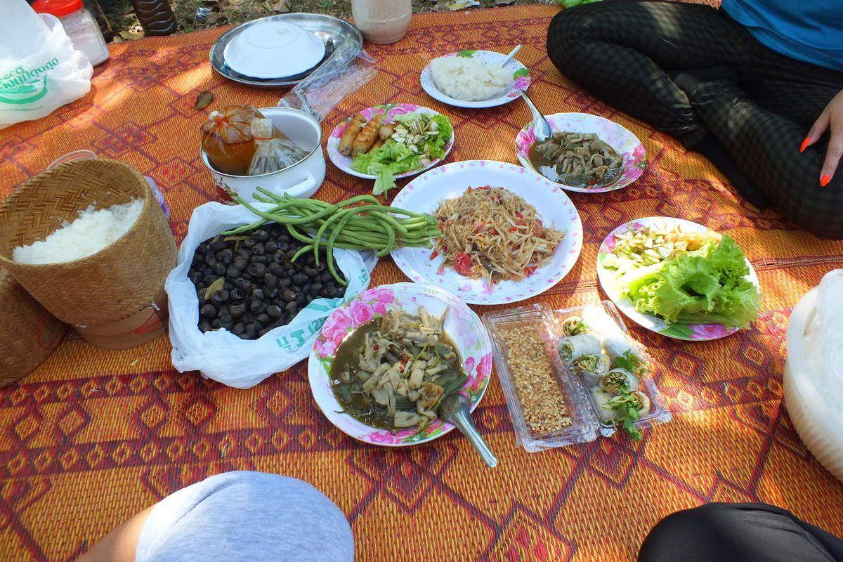 10 février 2016: Udonthani : Pique-nique à « Phu Foilom »