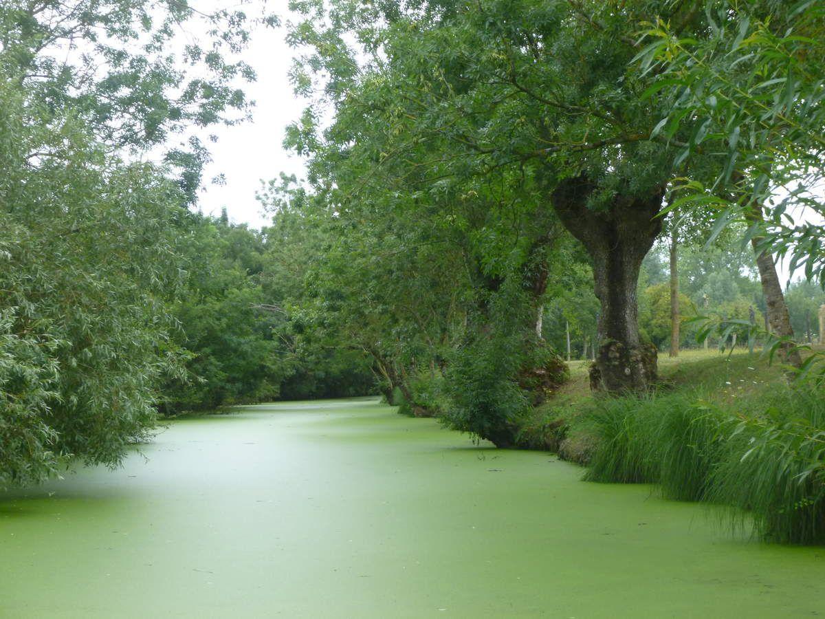 Vendée et Puy du fou