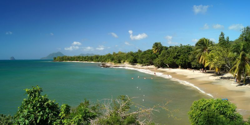 Le blog des lapinous - Office du tourisme martinique sainte luce ...