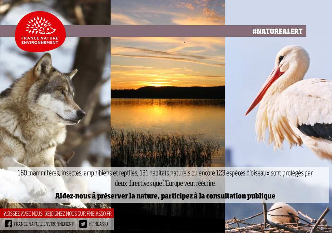 Sauvons les directives européennes « Oiseaux » et « Habitats »