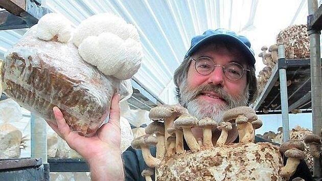 Monsanto tremble après la découverte d'un champignon tueur d'insectes : Paul Stamets, un mycologue, a découvert un substitut naturel aux pesticides