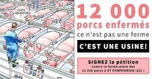 Mobilisation contre un projet de ferme de 12 000 porcs