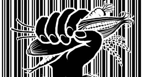 Lutte contre la biopiraterie : le Protocole de Nagoya et le TIRPAA
